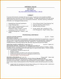 Proposal Summary Sample Fresh Design Resume Professional Summary ... Sample Curriculum Vitae For Legal Professionals New Resume Year 10 Work Experience Professional Summary Example Digitalprotscom Customer Service 2019 Examples Guide View 30 Samples Of Rumes By Industry Level How To Write A On Of Qualifications Fresh For Best Perfect Retail Included Unique Atclgrain Free Career Smaryume Manager Teachers