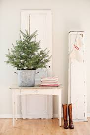 Potted Christmas Trees For Sale by 19 Exceptionally Brilliant Modern Christmas Tree Alternatives