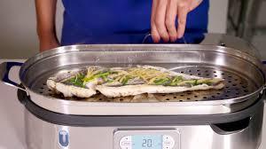steamer cuisine breville steam zone bfs800bss