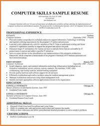 computer skills resume level resume exle computer skills resume ixiplay free resume sles