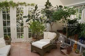 conservatory und pflanzen im gewächshaus mit innenpool spa stockfoto und mehr bilder arrangieren
