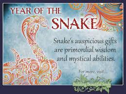 Snake Skin Shedding Lucky by Chinese Zodiac Snake Year Of The Snake Chinese Zodiac Signs