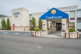 Comfort Inn Coupon Code Retailmenot - Coupons Canada By Mail ... Can You Use Coupons On Online Best Buy Rainbow Coupon Code 2019 Buy Baby Exclusions List Kmart Mystery Bag Hampton Inn Wifi Paul Fredrick Shirts 1995 Codes Hello Skin Discount Tophatter Promo April Sleep 2018 Google Adwords Polo Free Shipping Blue Light Bulbs Home Depot Mountain Creek Oktoberfest Order Pg Inserts Hilton Internet Mynk Lashes