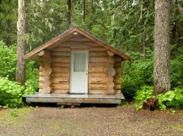 Building Your Own Tiny Log Cabin in the Woods