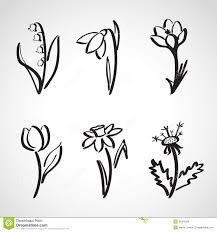 Drawn Flower Spring 10