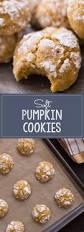 Libbys Pumpkin Cookies Oatmeal by 1074 Best Pumpkin Images On Pinterest