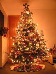 24 Beautiful Christmas Tree Pictures