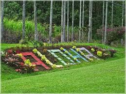Angie s Dreams Nani Mau Gardens