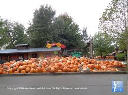 Bengtson Pumpkin Farm Chicago by A Pumpkin Patch Like No Other Bengston U0027s Pumpkin Patch In Homer