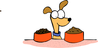 Pumpkin Rice For Dog Diarrhea by Dogs With Diarrhea Causes Treatments U0026 Tips Simple Wag