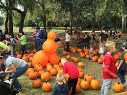 Pumpkin Patch Savannah Ga 2015 by 3 Events In Liberty County You Need To Attend This Fall Liberty