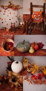 Pumpkin Patch Ct 2015 by Best 25 Halloween Mini Session Ideas On Pinterest Fall Mini