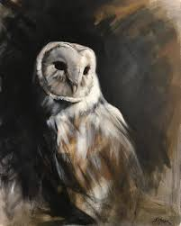 Owlart Hashtag On Twitter White Screech Owl Illustration Lachina Bbc Two Autumnwatch Sleepy Barn Owl Yoga Bird Feeder Feast And Barn Wikipedia Attractions In Cornwall Sanctuary Wishart Studios Red Eastern By Ryangallagherart On Deviantart Owlingcom Biology Birding Buddies 2000 Best 2 Especially Images Pinterest Screeching Youtube