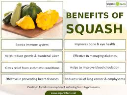 Types Of Pumpkins And Squash by 7 Amazing Benefits Of Squash Organic Facts