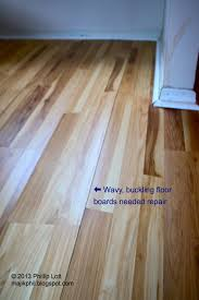 Hardwood Floor Cupping And Crowning by How To Fix Buckling Hardwood Floors Titandish Decoration
