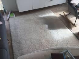 sale teppich hellbeige 170x240 cm hochflor wissmann wohnzimmer