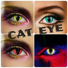 cat contacts unleash your side animal contacts