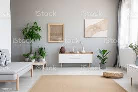 poster auf graue wand über weißen schrank im wohnzimmer interieur mit pflanzen und sofa echtes foto stockfoto und mehr bilder braun