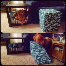 Dog Stairs For Tall Beds by Diy Dog Bed Ramps Or Couch Ramp Diy Pinterest Diy Dog Bed