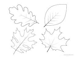 Autumn Leaves Printable Coloring Pages Leaf Outline Simple