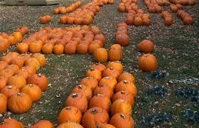Pumpkin House Kenova Wv Times by West Virigina Pumpkin House Ck Autumnfest Pumpkin House