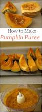 Pumpkin Enzyme Peel by Best 25 Pumpkin Peel Ideas On Pinterest Cinderella Birthday