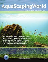 AquaScaping World Magazine August 2008 | World, To The And Aquarium Hamsa Wabikusa Style Aquascaping World Forum Httpwww Nature Aquarium And Aquascaping Wiki 25l Nano Capa 2011 French Aquascapers Results My Scape Iaplc Rank 70 The Passing Of Legend Takashi Amano Magazine With Nicolas Guillermin Surreal Submarine Amuse Aquascape The Month August 2010 Beyond Riccardia Chamedryfolia Question This Is Ada 2009 Susanna Aquascape Garden Bonsai Plants