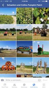 Pumpkin Patch Dixon Il by Schaefers And Collins Pumpkin Patch Home Facebook