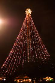 Mythbusters Christmas Tree by 21 Best Lights Of Christmas Images On Pinterest Christmas Ideas