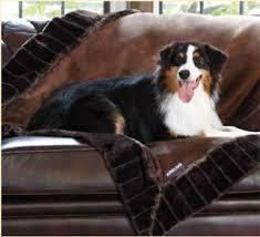 Kirkland Dog Beds by Kirkland Signature Pet Food And Pet Supplies U003e Home