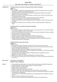 Download International Sales Manager Resume Sample As Image File