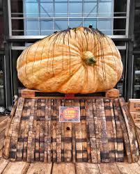 Elysian Pumpkin Ale Festival by Recap 13th Annual Great Pumpkin Beer Festival U2013 What U0027s Up Nw
