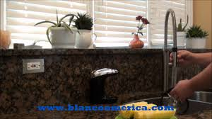 Blanco Meridian Semi Pro Kitchen Faucet by Rare Cuts Video Blanco Culina This Faucet Rocks Youtube