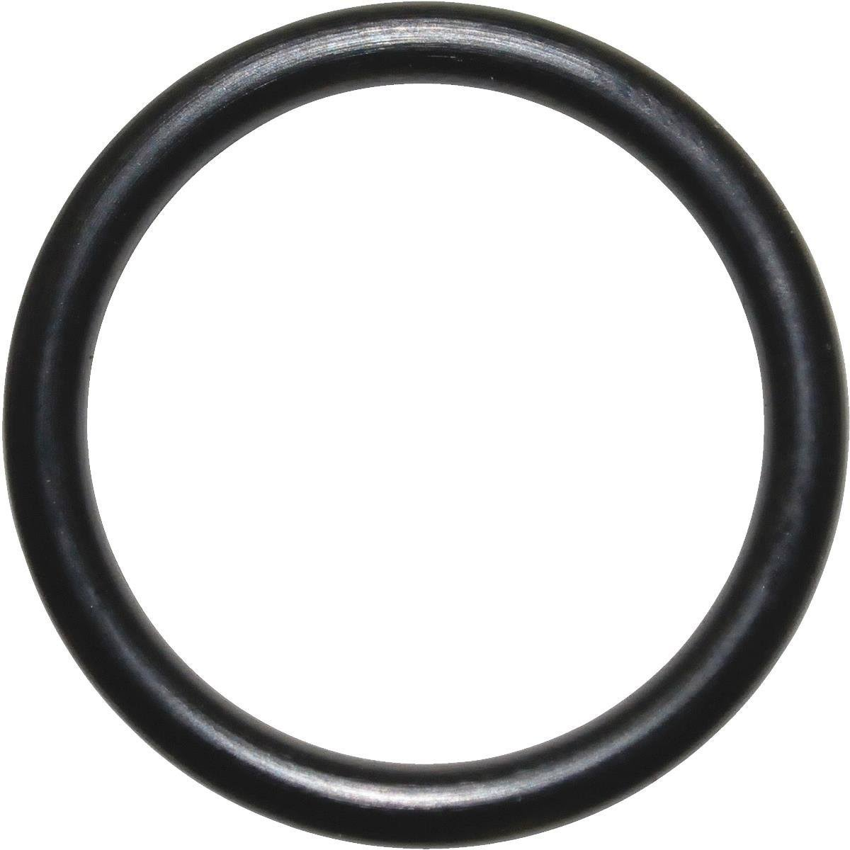 Danco Perfect Match O-Rings