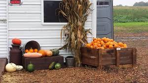 Northeast Iowa Pumpkin Patches by Williamson Paradise Farms Ankeny Ia