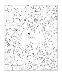 Cats Quilts Adult Coloring Book