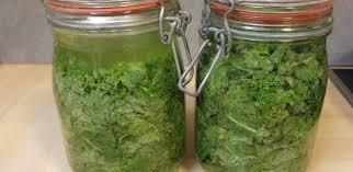 cuisiner les l馮umes autrement lactofermentation moyen simple et économique de conserver les légumes
