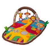Baby Gym & Play Mats