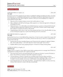 Music Industry Executive Page2