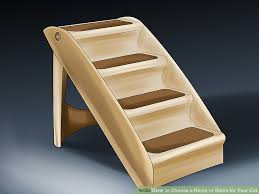 cat stairs how to choose a r or stairs for your cat 10 steps