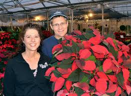 100 Blooming House Cherokee Growers Onpoint For Poinsettias Siouxland Life
