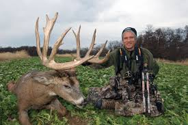 When Do Whitetails Shed Their Antlers by These Shed Hunting Tips Will Make You A Better Hunter Petersen U0027s