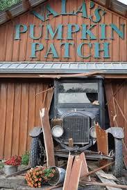 Omaha Pumpkin Patch by Helpful Tips For Visiting Vala U0027s Pumpkin Patch In Nebraska