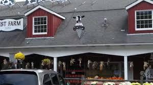 Casola Farms Halloween demarest farm trip u0026 caramel apple recipe youtube