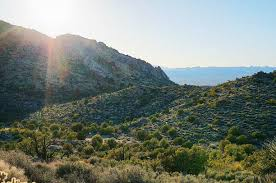 Christmas Tree Pass Laughlin AZ Nevada