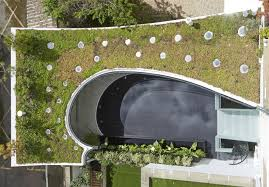 100 Tonkin Architects Gorgeous Greenroofed Studio Features A Rainwater Reflecting Pool