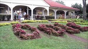 Dole Plantation The World s st Maze Hawaii s Pineapple