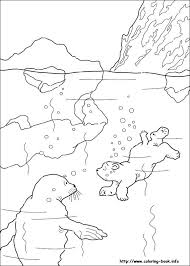 Full Image For Polar Bear Coloring Pages Toddlers Pdf Cute