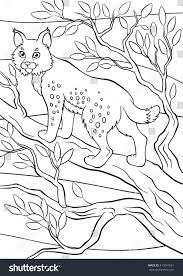 Coloring Pages Animals Little Cute Lynx Stands And Smiles