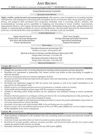 Auditing Resume Examples